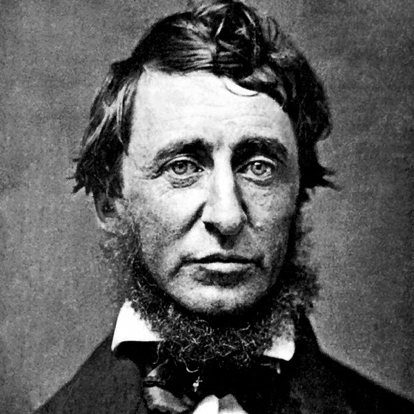 """Unter die Lider der Zeit schauen.  Henry David Thoreau """"Tagebuch II"""""""