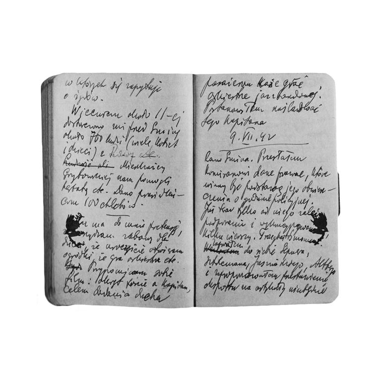 Chronik der Gegenwart. Tagebuch und Zeitgeschichte